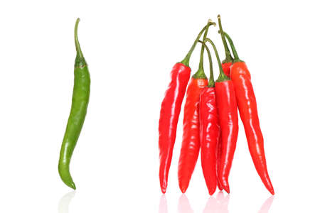 Fresh Red   green chilly close up isolated on white  photo