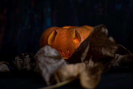 Halloween pumpkin lantern with dry leaves and with dark background