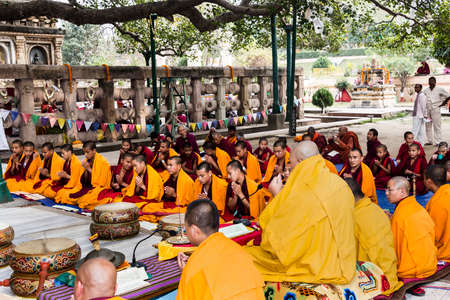 chanting: Tibetan monks are celebbrating a ceremony beneath the bodhi tree, under which the buddha became enlightened  They are chanting, their drums are lying in piles between them