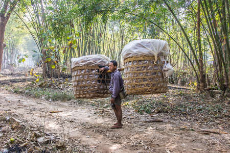 shoulder carrying: A man is carrying a big load in two baskets on his shoulder. he comes from a market at the bank of lake Inle, Myanmar.