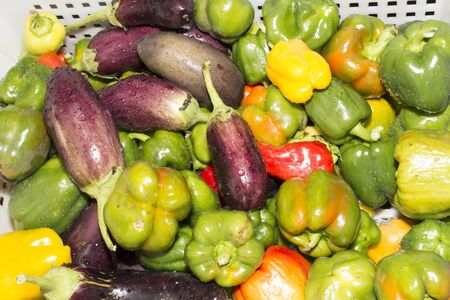 pepper, eggplant, fresh vegetables are in the drawer, close-up