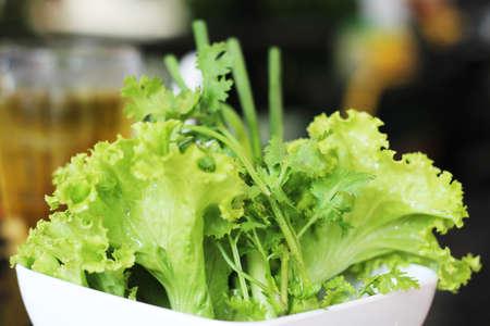 Vegetable green background.