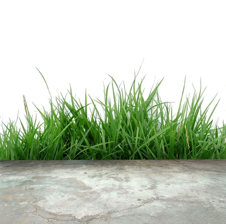 concrete floor with green grass isolated Stock Photo