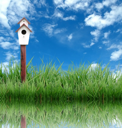 birdhouse with green grass and blue sky Stock Photo - 8393241