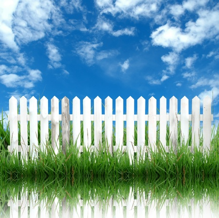 picket green: white fence and blue sky