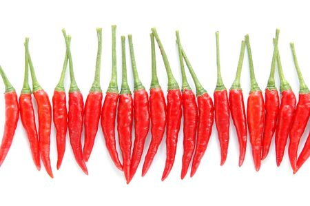 red chili isilated 写真素材