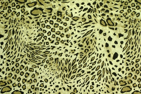 jaguar: Safari stijl stof Stockfoto
