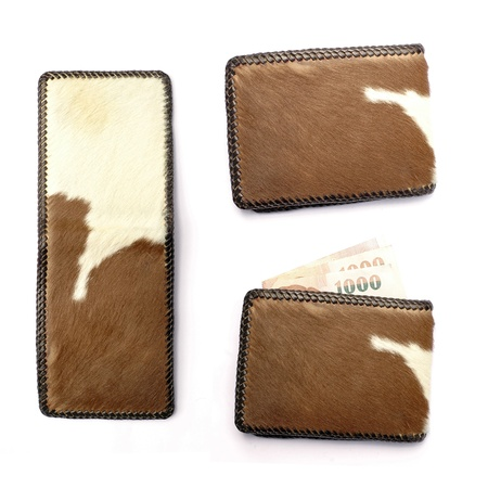 wallet isolated photo