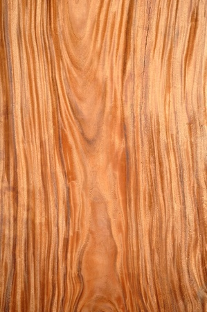 wooden floors: texture of wood