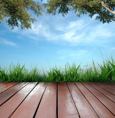 wooden terrace Stock Photo - 8883874