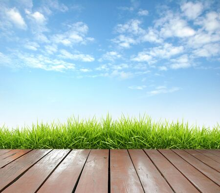 wooden terrace with fresh spring green grass and blue sky photo