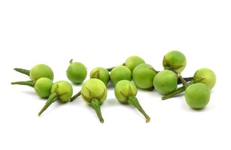 ingradient: Solanum  indicum, thai food ingradient