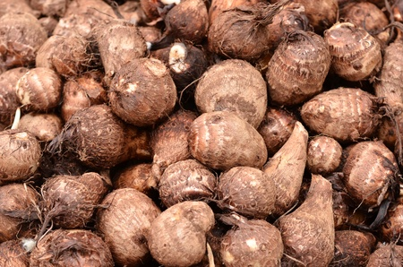 taro: background of fresh taro root(colocasia) Stock Photo