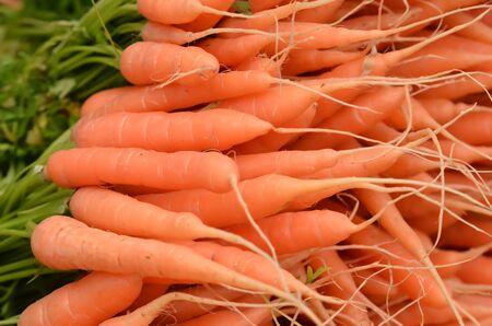 fresh carot on a market photo