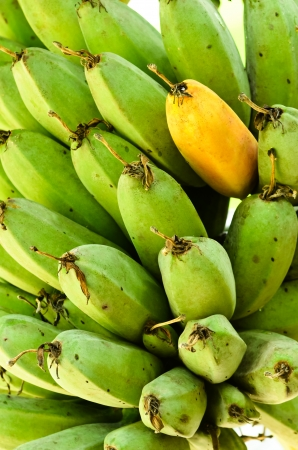 fresh ripe and green banana photo