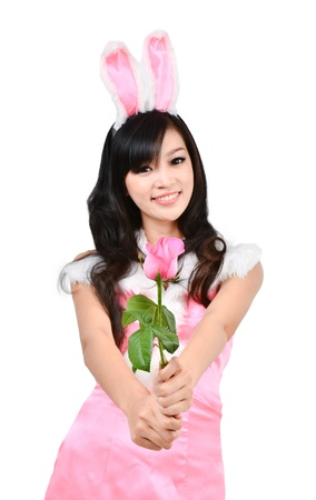 sexy costume: Sexy bunny girl hold pink rose Isolated on white background