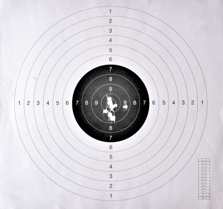 sniper training: Holes in a shooting practice target