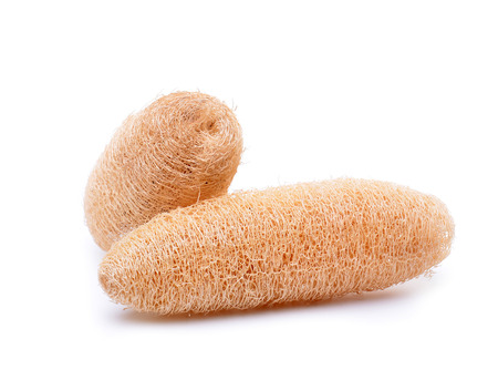 loofah isolated on white background photo