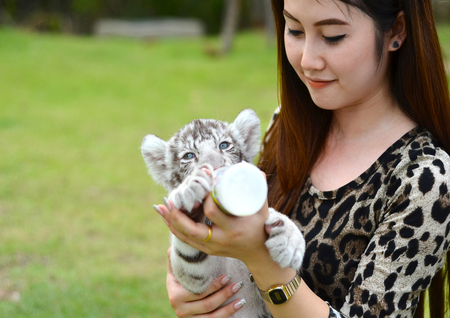pretty women feeding baby white bengal tiger photo