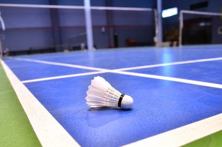 badminton court with a shuttlecock at the corner