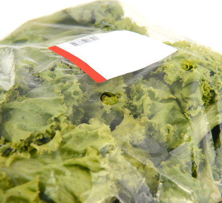iceberg lettuce in plastic bag package with price tag