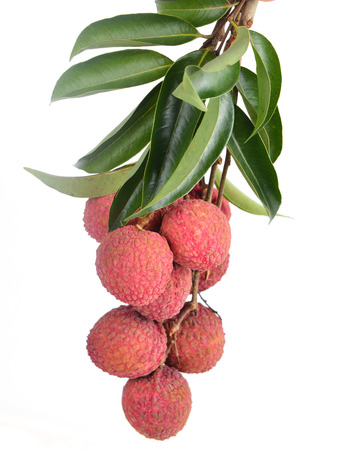 lichee: Fresh lychees isolated on white background Stock Photo