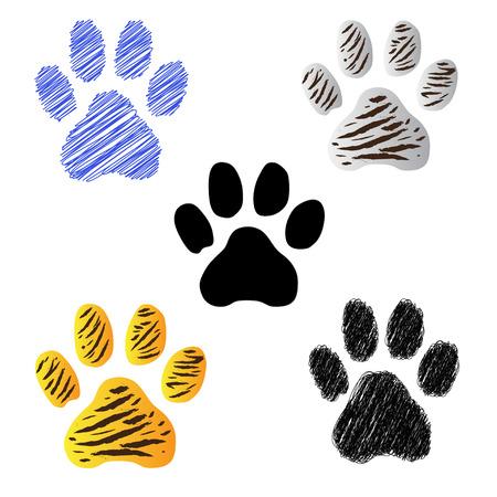 panthera: tigre impronta con strisce su sfondo bianco Vettoriali