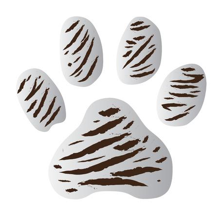 panthera: tiger impronta bianco vettoriale su sfondo bianco