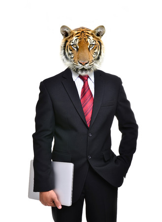 business man with tiger head isolated on white background Stock Photo
