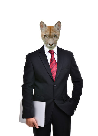 working animal: business man with animal head isolated on white background Stock Photo