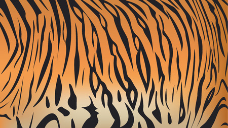 Vector illustration of bengal tiger stripe pattern