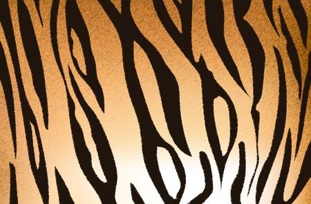 Vector illustratie van de Bengaalse tijger streeppatroon Stockfoto