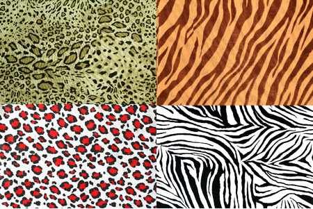 animal pattern: safari style fabric collection can use for background