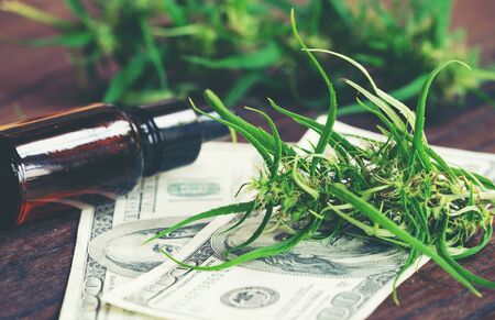 cannabis with cannabidiol (cbd) extract on hundred dollar banknote 写真素材