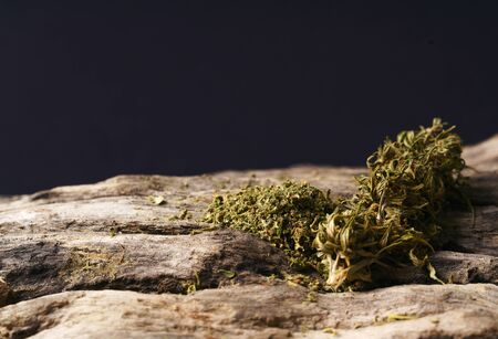 dried cannabis medical marijuana on wooden background