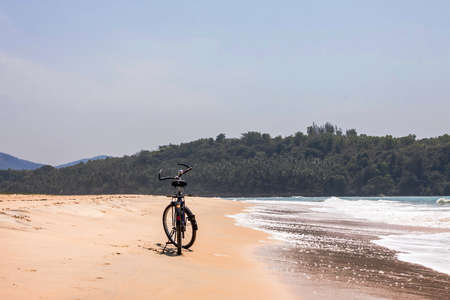 bicycle on a sand shore and tropical forest