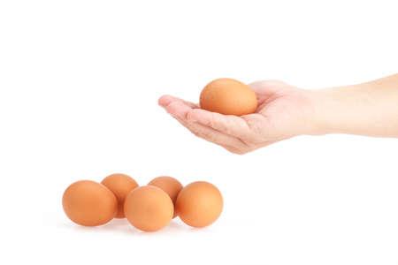 Hand hold egg on white background photo
