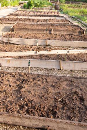 Convert vegetables that prepare the soil for planting vegetables Stock Photo