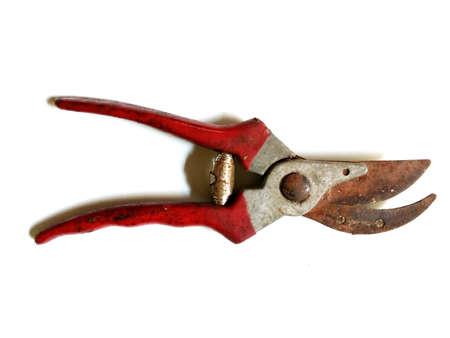 shears: Rusty pruning shears Stock Photo