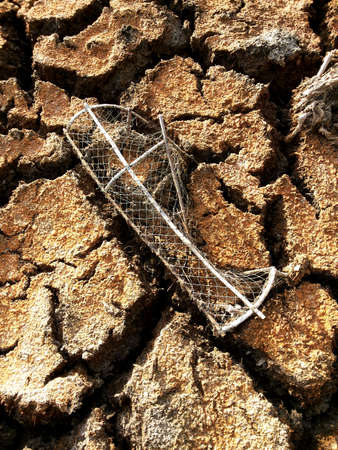 difficult lives: Baked fish trap om cracked dry land