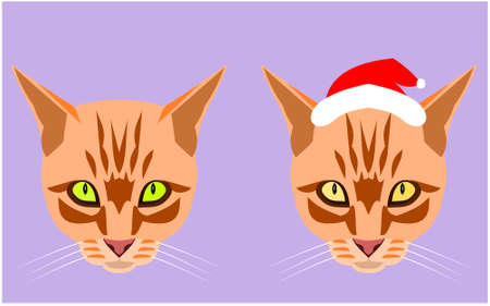 Two head and face of the orange color tabby cat wearing a Santa Claus hat on purple background, Cartoon and graphic about Christmas pets and New Year's celebration