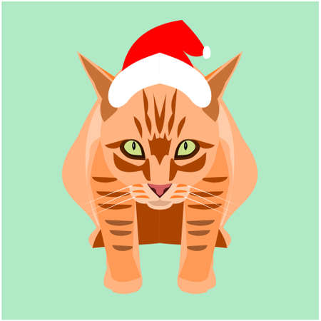 Orange color tabby cat wearing a Santa Claus hat on green background, Cartoon and graphic about Christmas pets and New Year's celebration