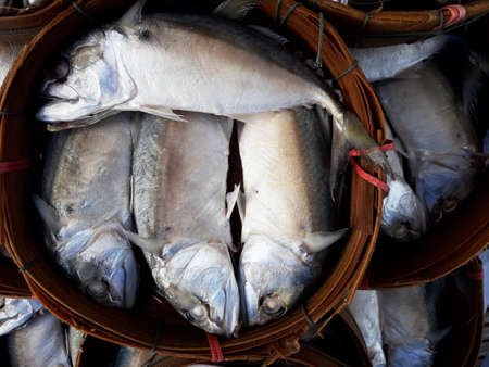 Streaming short mackerel in bamboo basket for sales in fresh market, Food culture and Sea fish in Thailand