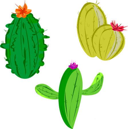 Cactus Иллюстрация
