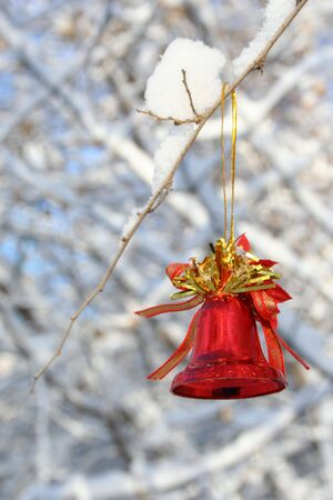 Red Christmas bell hanging on the branch of a tree