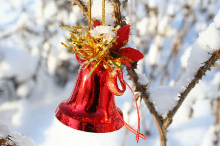 red Christmas bell hanging on a branch of a bush