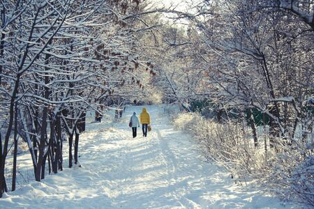 Two people having walk in winter on sunny day