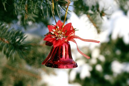 Red Christmas bell hangig on the branch of fir-tree Stock Photo