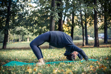 Woman doing yoga in park Stock Photo - 17242147