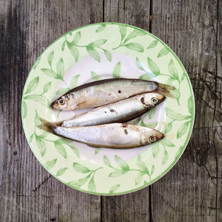 Green plate with three spiced sprats